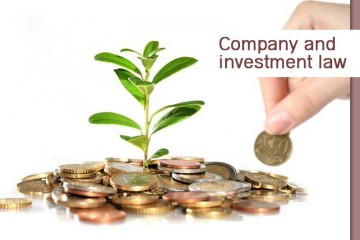Company and investment law